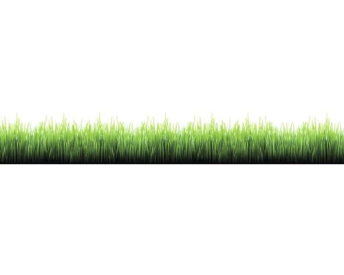 Ordentlich Bordüre Digital selbstklebend Gras bei HORNBACH kaufen | Hornbach  FJ31