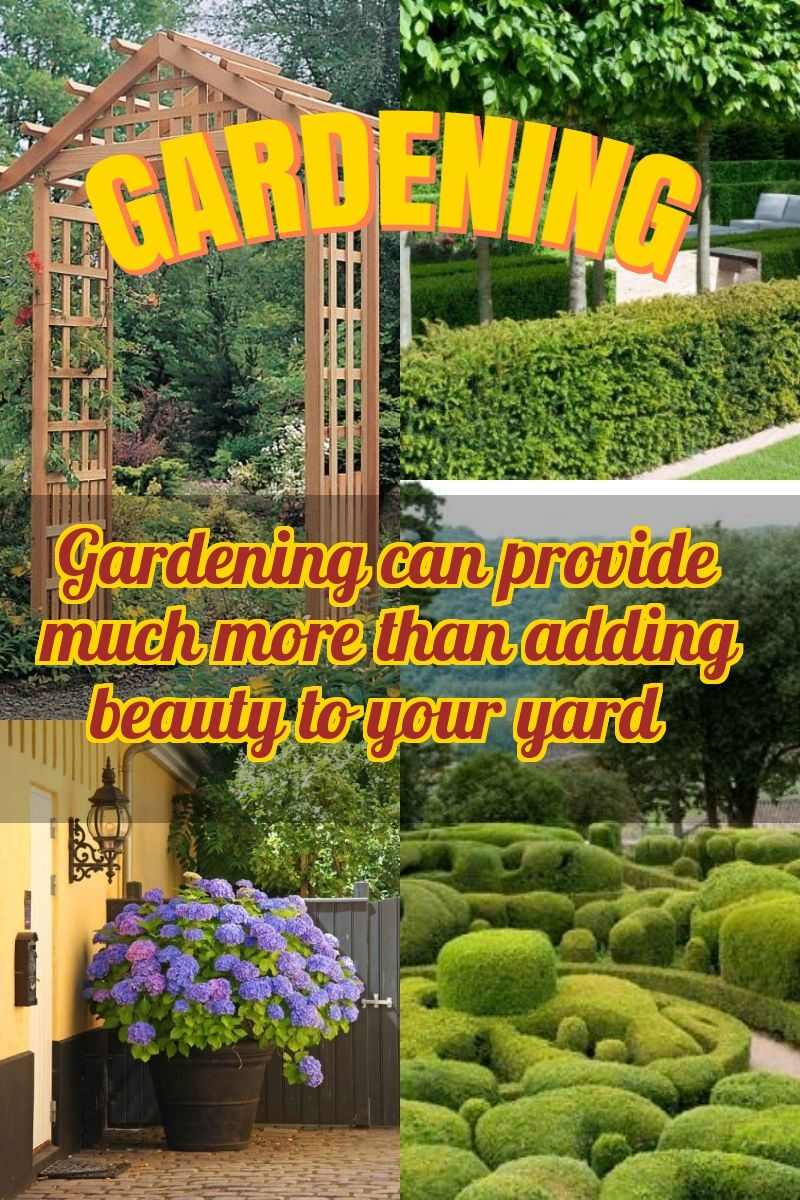 Tips To Make Your Garden More Beautiful Backyard