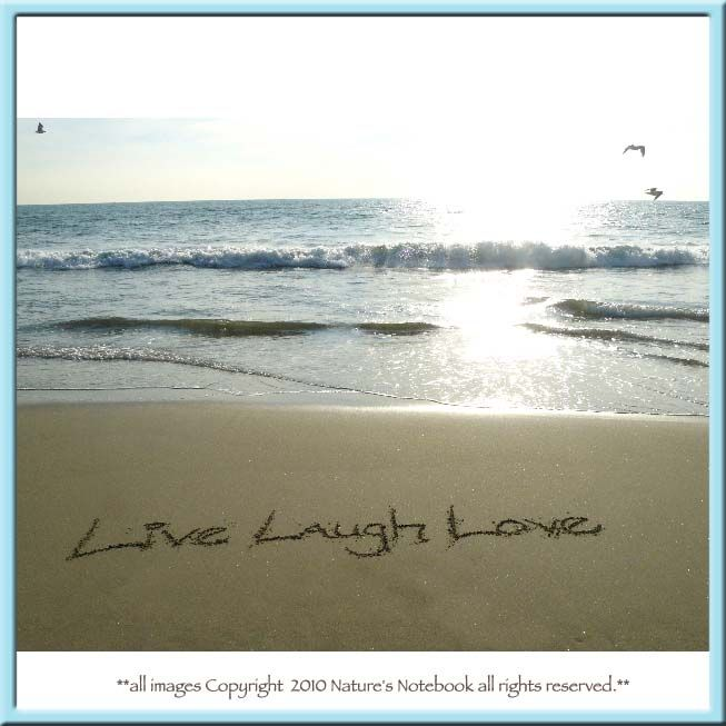 Image Detail For Live Laugh Love Written In The Sand Fine Art Print Live Laugh Love Beach Words Laugh