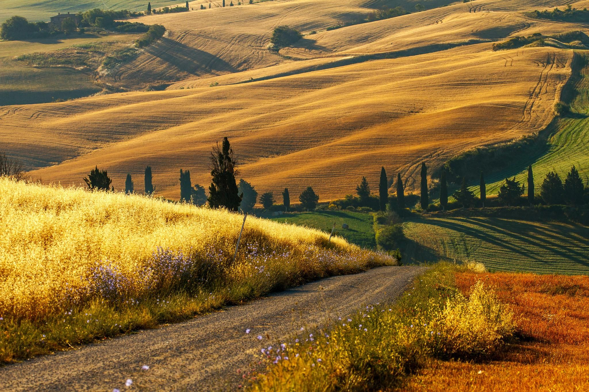 tuscany countryside | | Under the Tuscan Sun | Pinterest ... for French Countryside Wallpaper  113cpg
