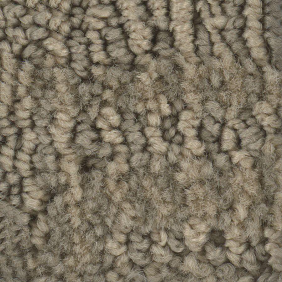 Stainmaster Petprotect Belle Lucky Berber Indoor Carpet