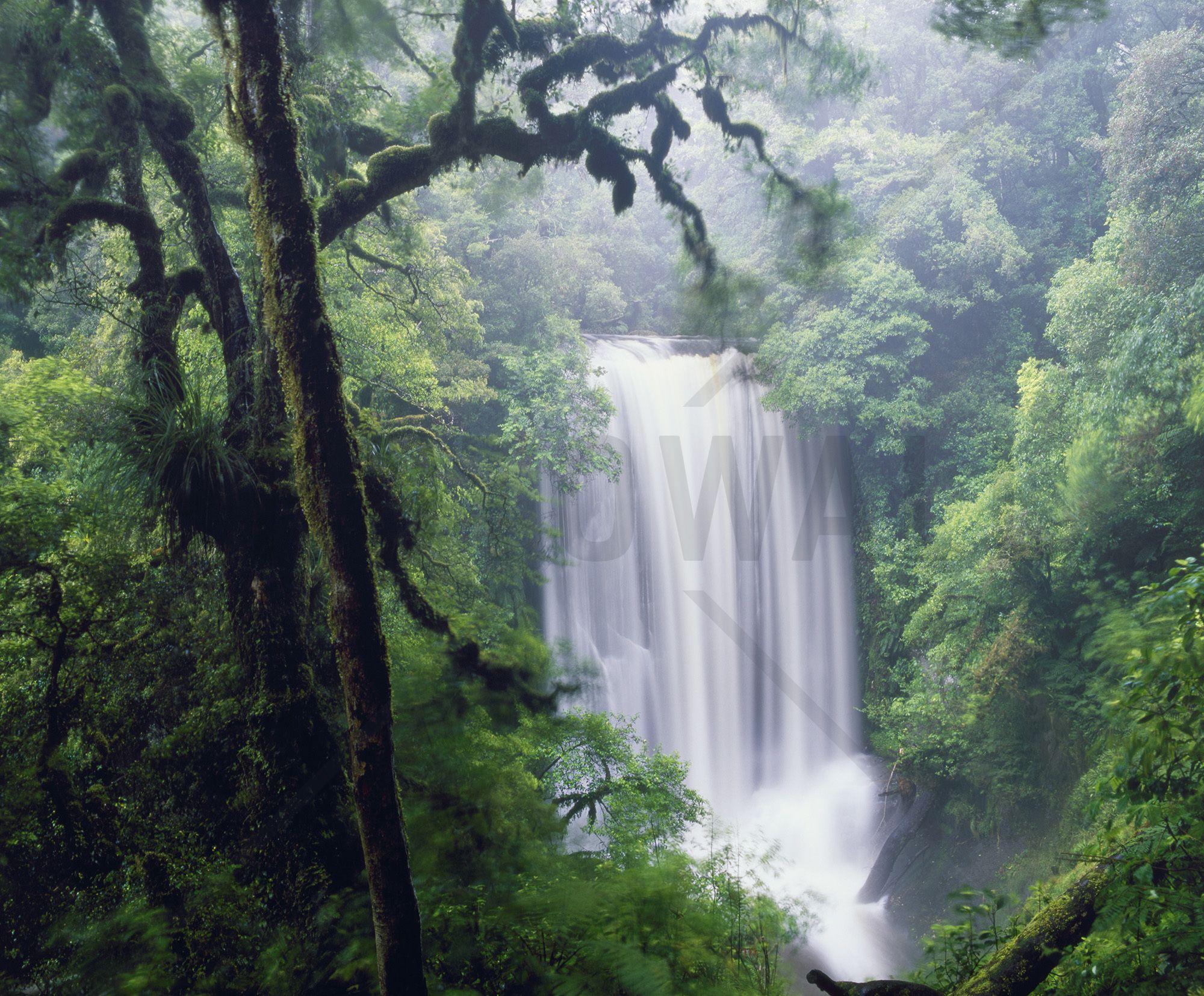 Waterfall in the Rain Wall Mural