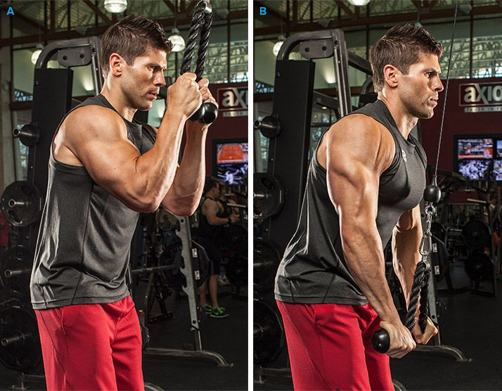 5 Beastly Arm Routines   Body & Fitness   Workout, Triceps