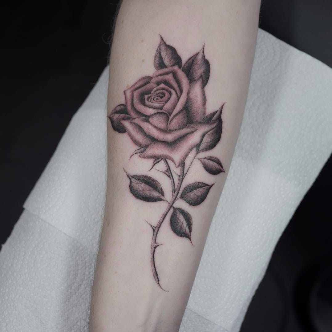 Rose By Ruby Quilter Rubymayquilter Blackandgrey Oldschool Illustrative Rose Leaves Thorns Realistic Rose Thorn Tattoo Rose Flower Tattoos Rose Tattoos