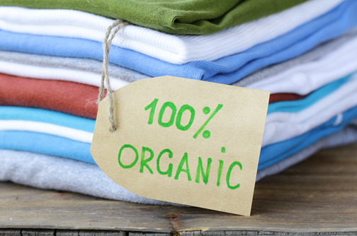 1 Fabric: Organic Cotton, relates to not using gas with the prices up.  Helps the environment | Eco clothing, Eco friendly clothing, Organic style  clothing