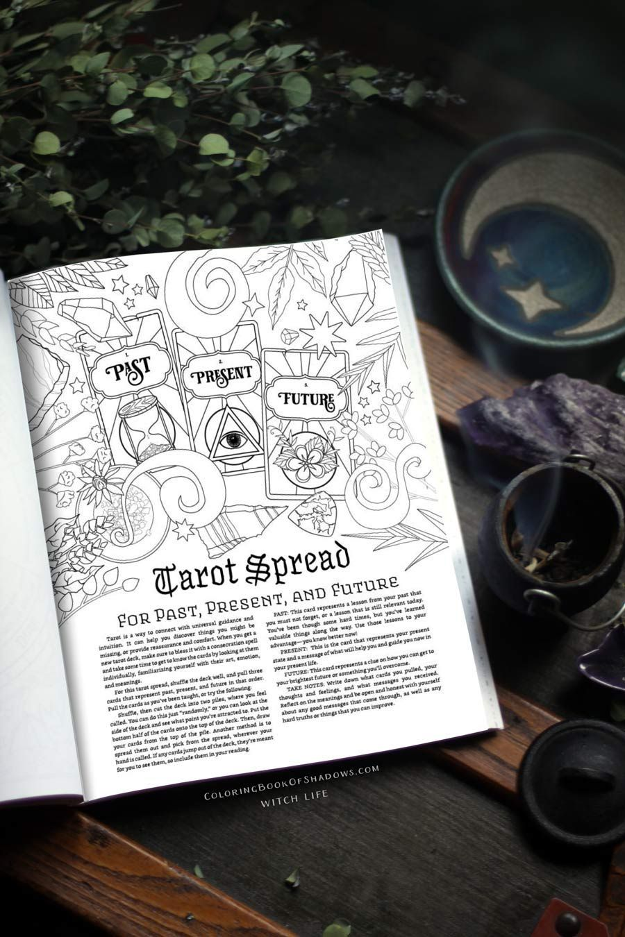 Coloring Book Of Shadows Witch Life Grimoire Book Book Of Shadows Witchcraft Spell Books