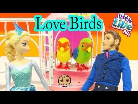 Little Live Pets Love Birds Talking Singing Interactive Toys With Frozen Queen Elsa Cookieswirlc Little Live Pets Pets Interactive Toys