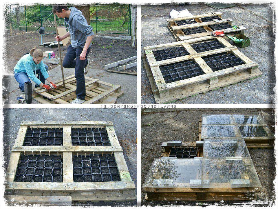 construire une serre pour les semis avec une palette. Black Bedroom Furniture Sets. Home Design Ideas