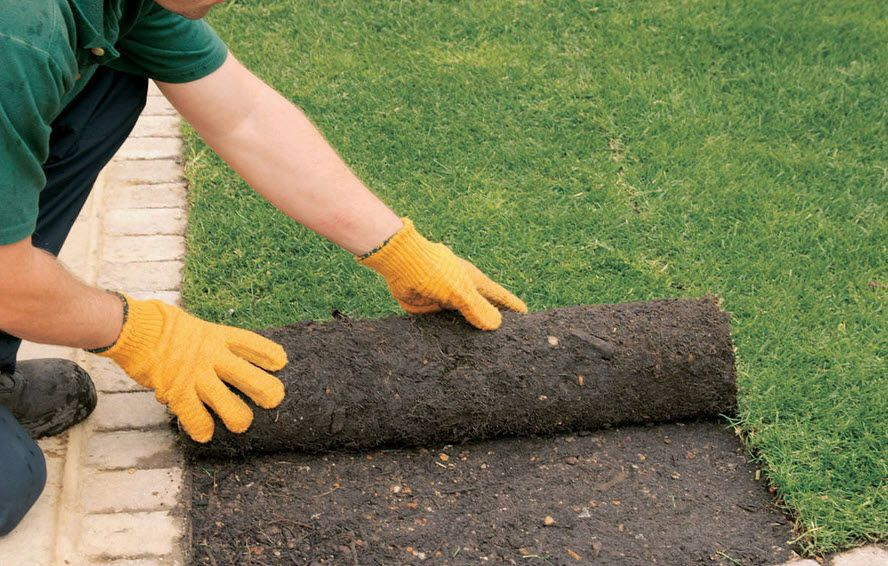 Turf Laying How to lay turf, Lawn mowing business