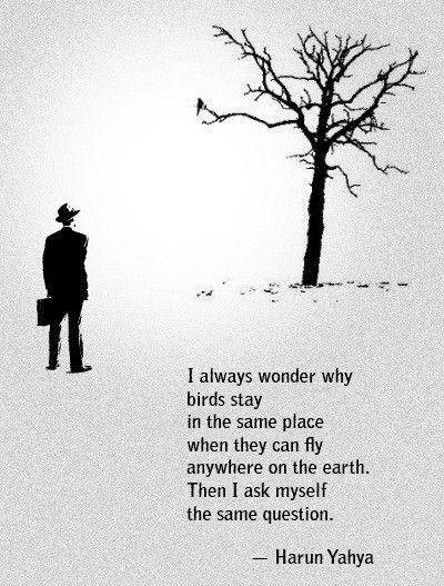 A wise haiku...