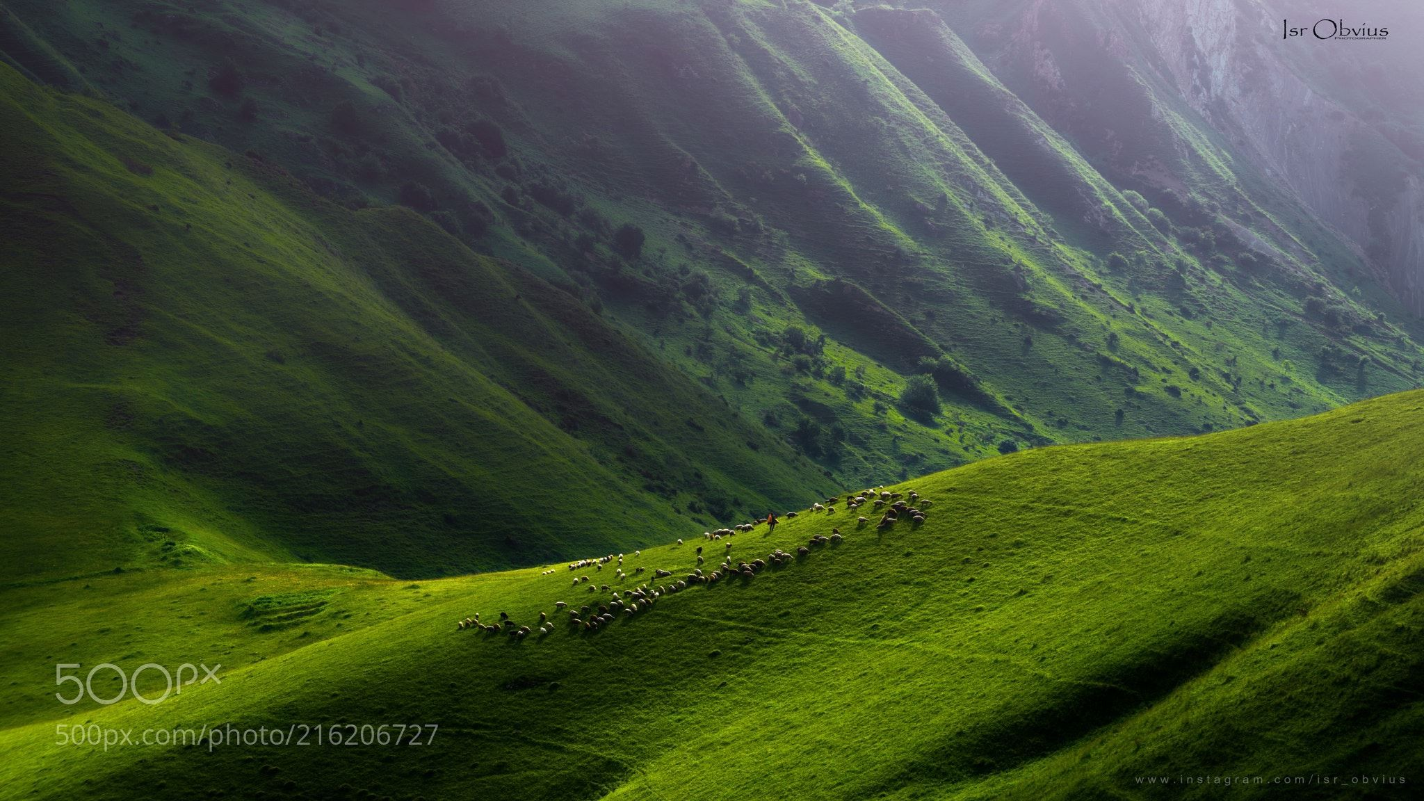 Grassland (İsr Obvius - Rəşad İsgəndəroğlu / Baku / Azerbaijan) #NIKON D810 #landscape #photo #nature
