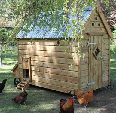 Portable chicken house on wheels 20 24 bird house with for Portable hen house