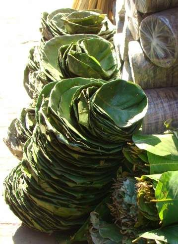 Leaf plates, used for special meals, found on Asan Tole in Kathmandu