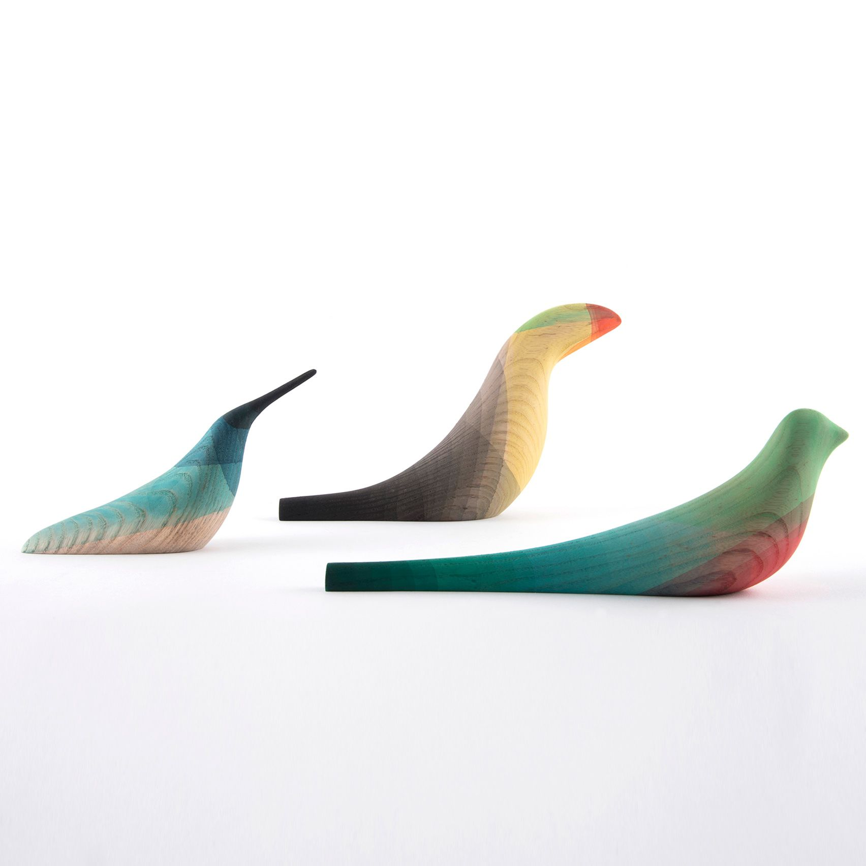 "Mexican designer Moisés Hernández's dipped his Immersed Birds collection in coloured water to recreate the ""glowing"" plumage of tropical species."