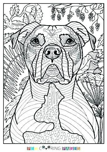 pitbull coloring page coloring pages elegant coloring pages and ...