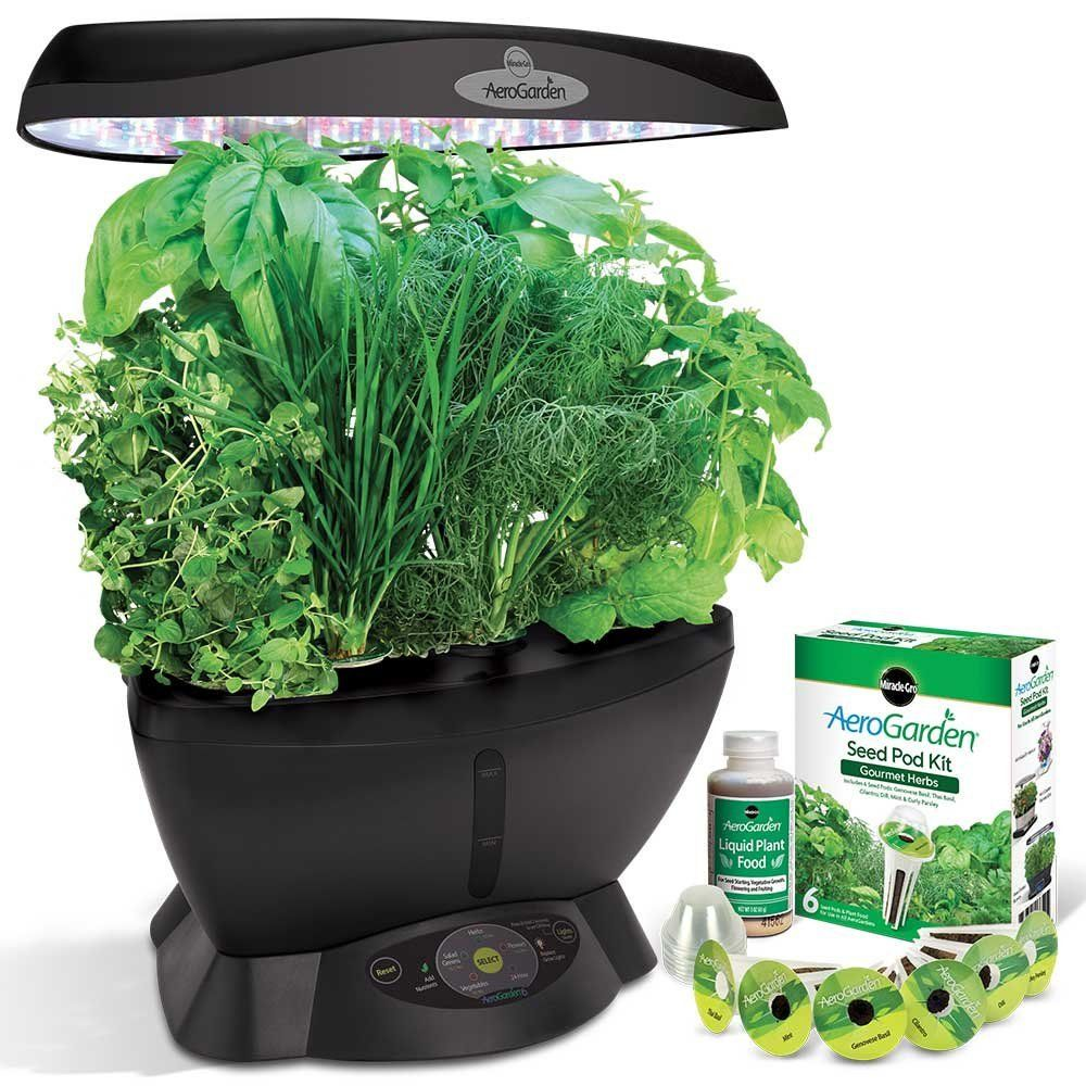 Best Indoor Herb Growing Kits Even DieHard Plant Killers