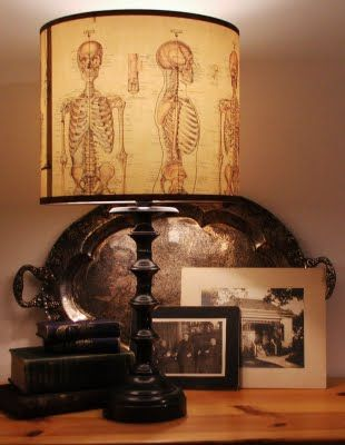 Medical Themed Lamp Shade