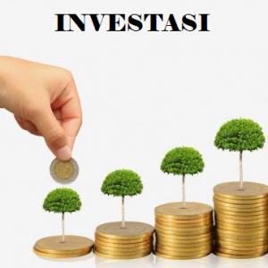 Pengertian, Fungsi, Tujuan Dan Jenis Investasi Beserta 5