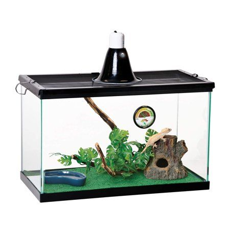 Zilla Tropical Starter Kit For Reptiles Walmart Com In 2020 Reptile Terrarium Aquaponics Fish Reptiles