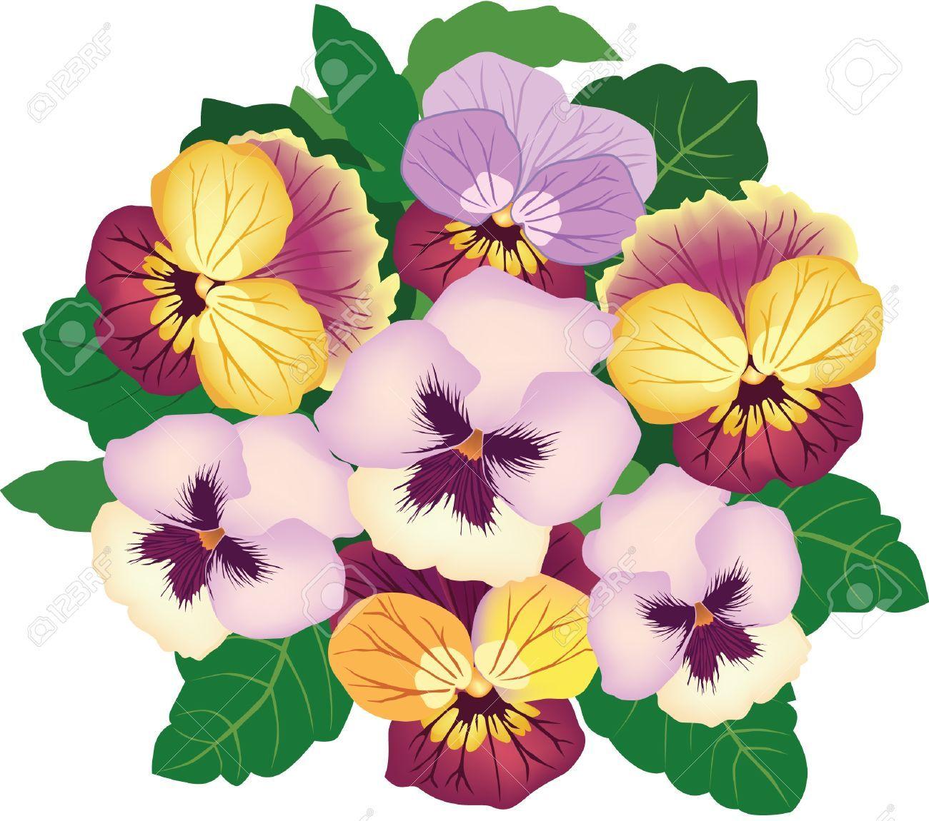 Nurcan Cuceoglu Pansies Flowers Flowers Bouquet