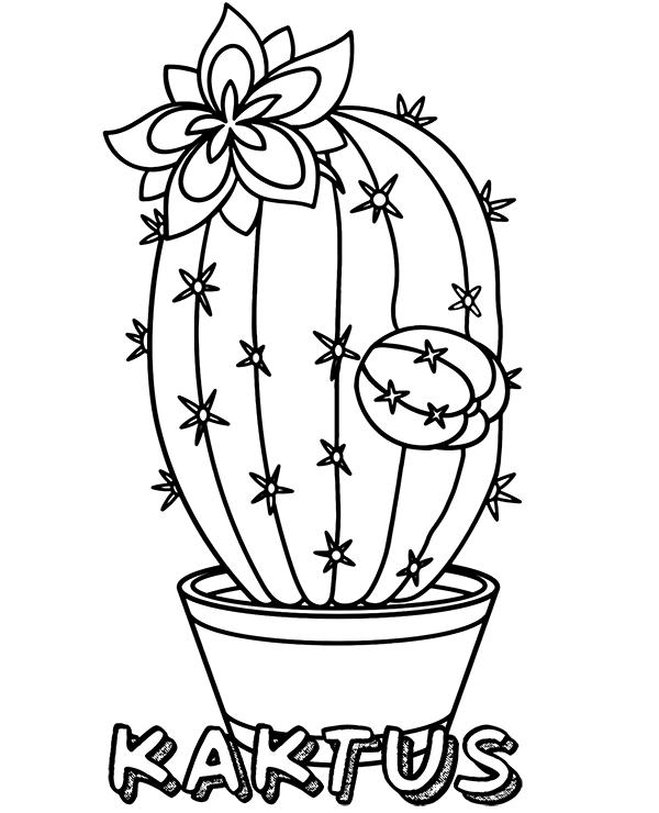 Kaktus W Doniczce Kolorowanka Flower Coloring Pages Free Coloring Pages Pattern Coloring Pages