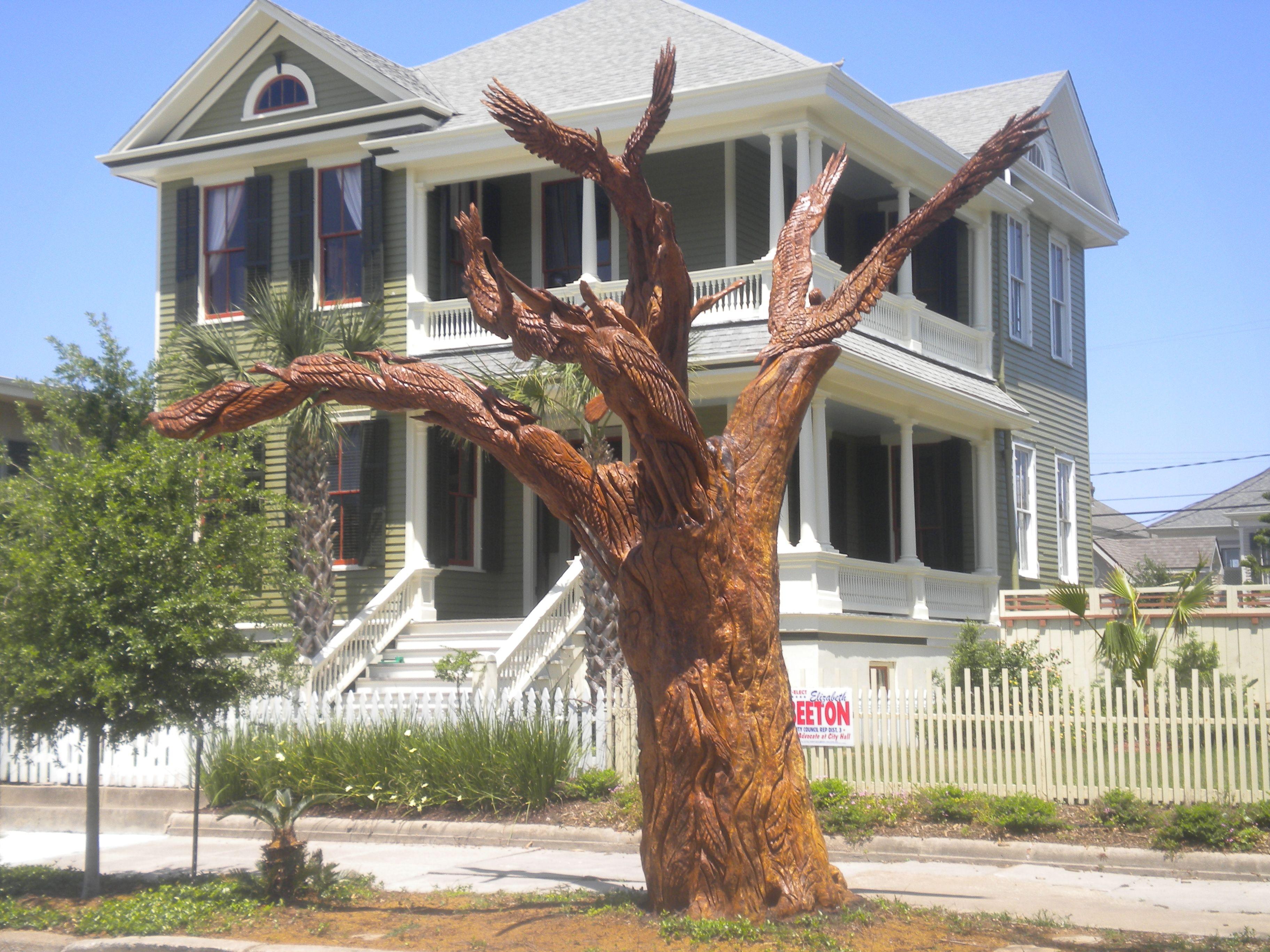 "100 year old oak is transformed into ""Gulf Coast Birds of Paradise"" after it dies in hurricane Ike."