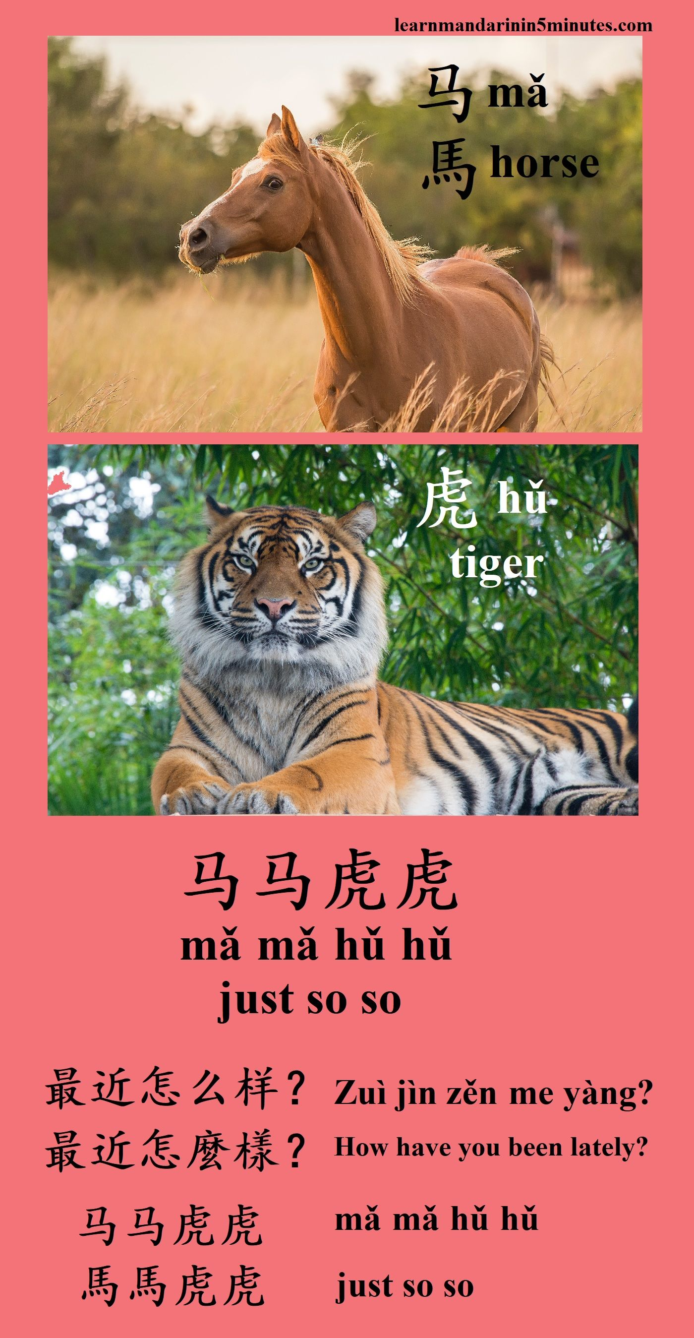 Chinese Polite Words And Expressions You Should Know