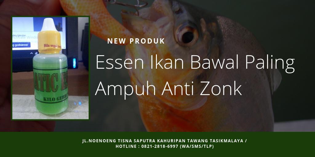110 Ide Terbaru Essen Oplosan Terbaik Paling Jitu Essen Mogok Makan Ikan