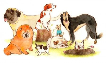 group of dogs   Jess Golden