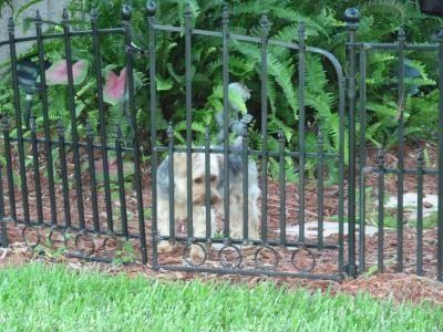 No Dig Decorative Metal Fence Panels Decoration For Home