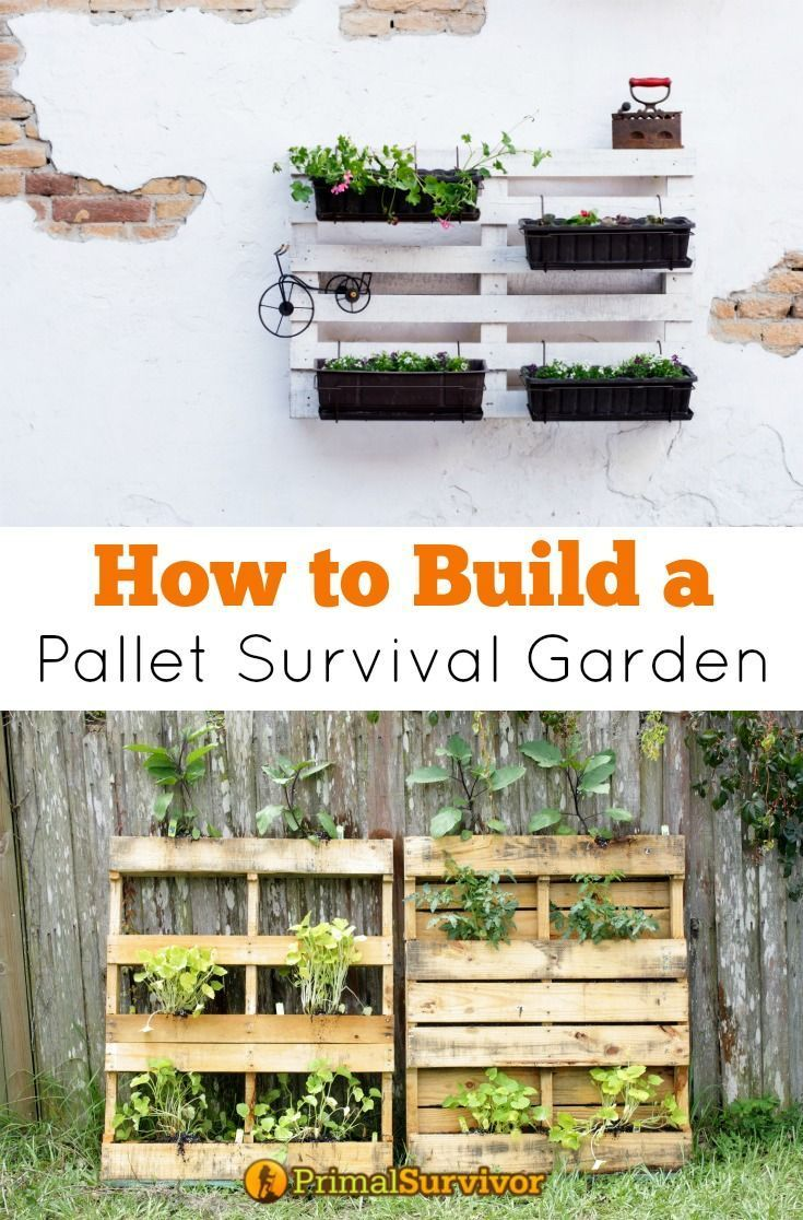 how to build a pallet survival garden that will feed your family for