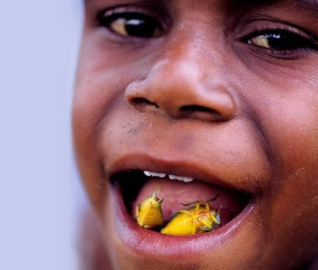 Stink bugs anyone? These little critters are a welcome source of protein in Indonesia.