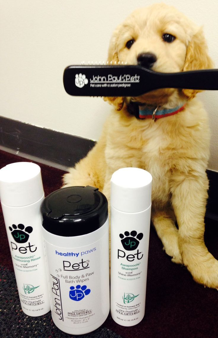 PAUL MITCHELL PET PRODUCTS! Paul mitchell, Hairdressing