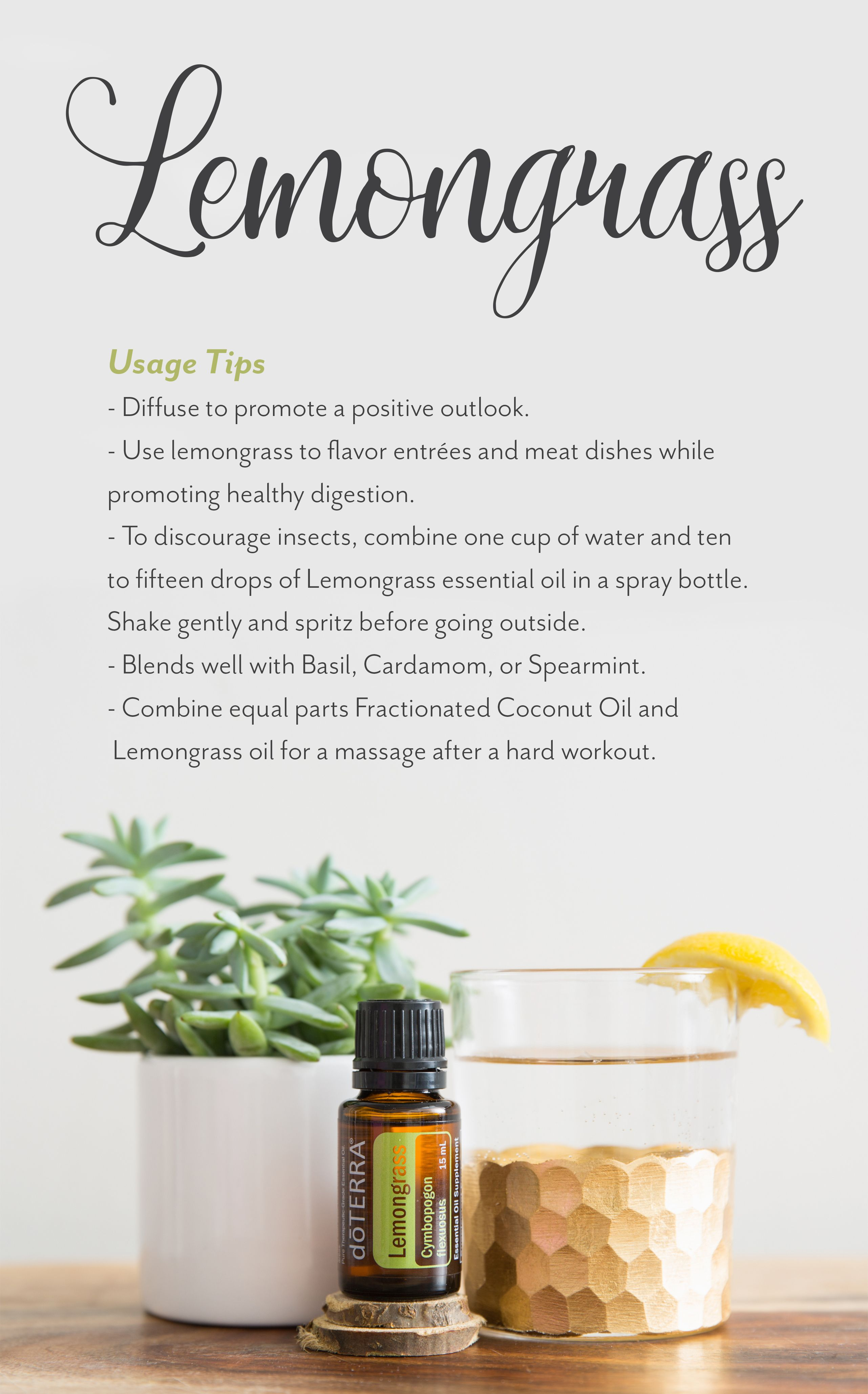 Pin On Essential Oil Tips Tricks