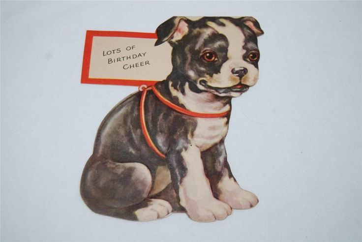 Boston Terrier Birthday Images Vintage Boston Terrier Puppy Dog