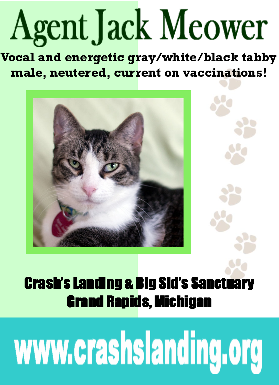 Adopt Agent Jack Meower On Petfinder Adoption Sids Grand Rapids