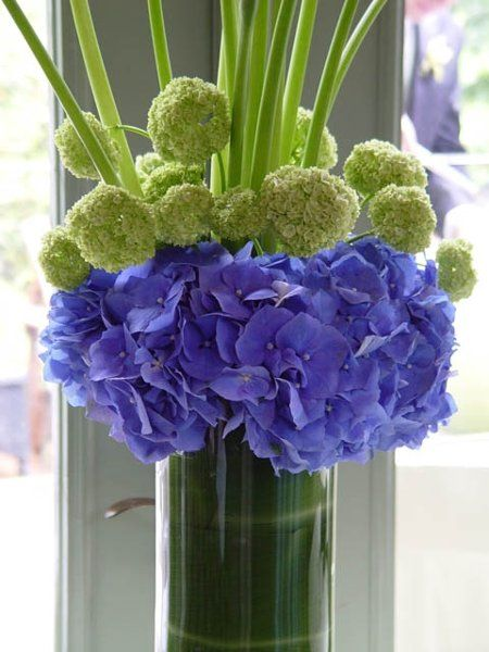 My photo album green hydrangea calla lilies and