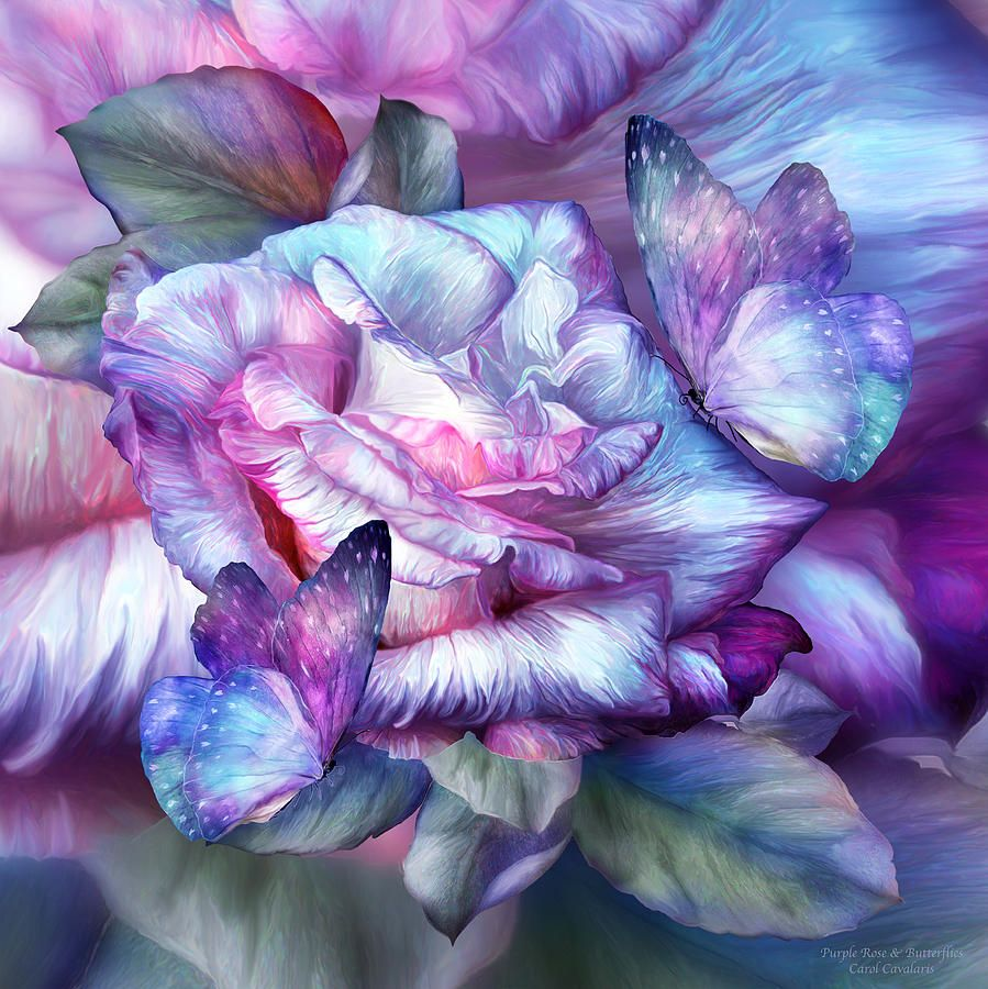 Image: 'Purple Rose & Butterflies' by Carol Cavalaris