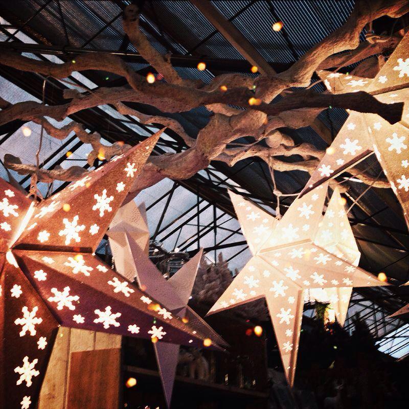 Kerststerren aan takken, alternatieve verlichting met de feest-/kerstdagen