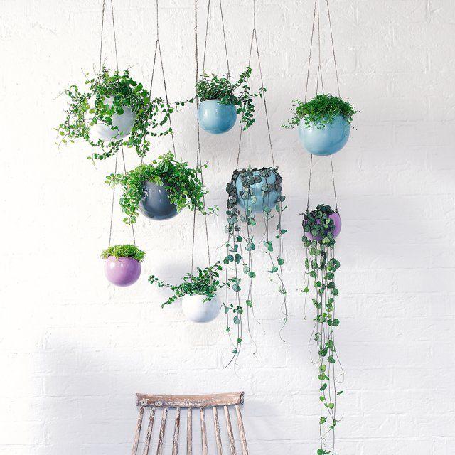 15 pots de fleurs suspendus et irr sistibles hanging plant gardens and interiors. Black Bedroom Furniture Sets. Home Design Ideas