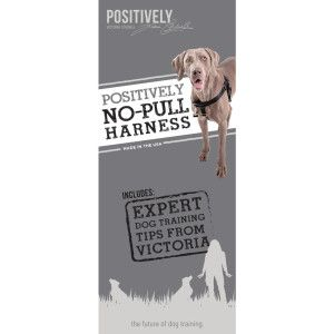Victoria Stilwell Positively Training Tools Positively No Pull