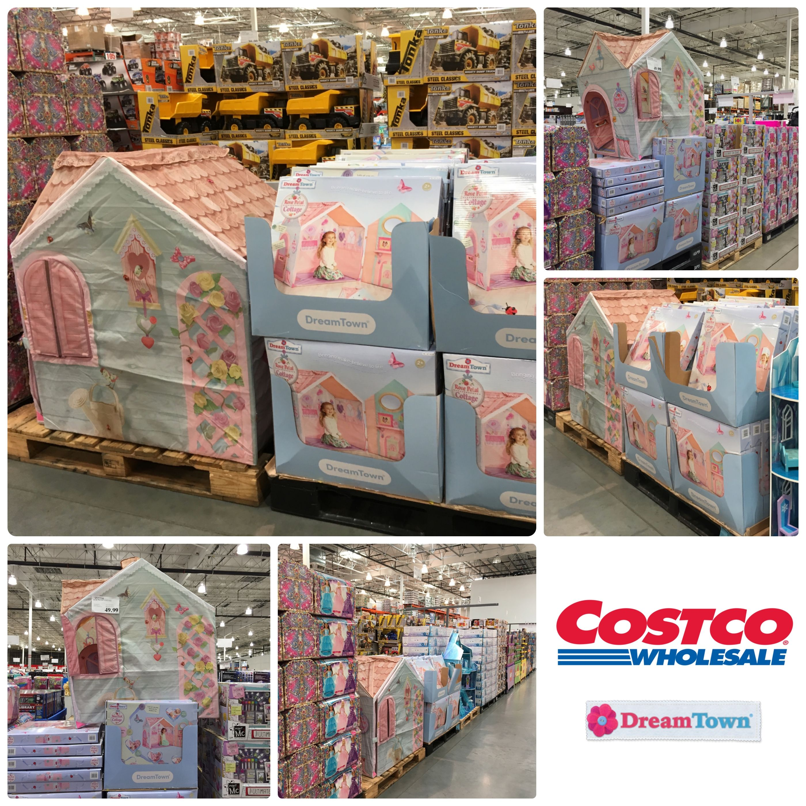 available in store and on line at costco usa the dreamtown rose