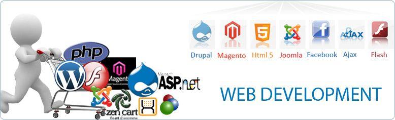 Best Web Development Company In Usa India Web Development Website Design Services Web Development Design