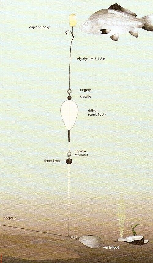 Montage ZIG   RIG         Fishing      Ryb    sk   uzly  Ryb    stv   a Uzly