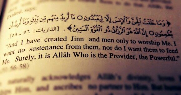 The koran surah summary