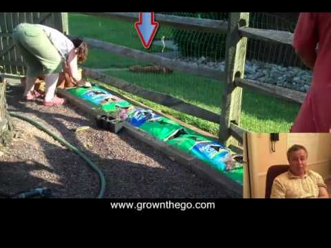 All about #easygrowing using container garden techniques.  Easy Growing, Your #ContainerGardening Made Easy  Succulent Vegetables, Aromatic Herbs and Colorful Flowers An Easy Growing Method for Container Gardening  #growingherbs, flowers and vegetables can add real zest to life through winter and summer.    More info at http://easygrowing.info