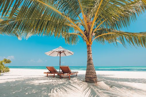 Prime Vacation In Tropical Countries Beach Chairs Umbrella And Inzonedesignstudio Interior Chair Design Inzonedesignstudiocom