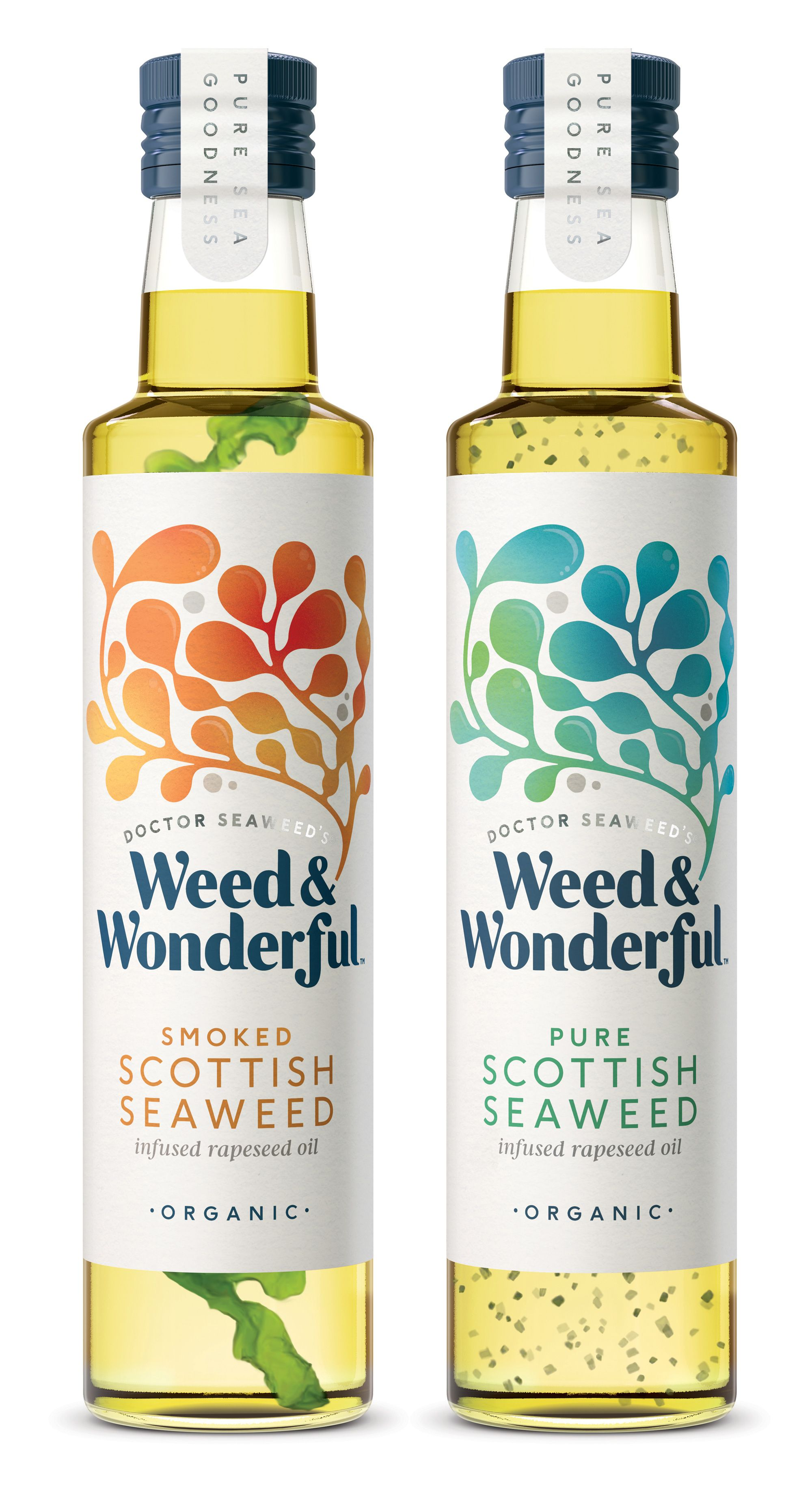 Brand and Packaging Design for Seaweed Essence a Healthy