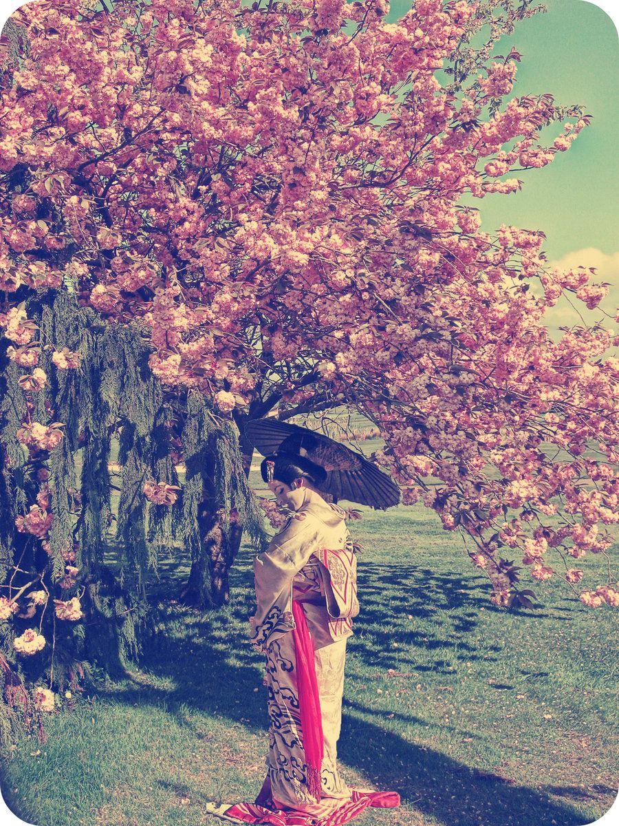 Cherry Blossom Girl By Isik5 On Deviantart Cherry Blossom Girl Geisha Japan Painting