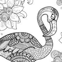 100 Free Coloring Pages for Adults and Children | Flamingo, Free ...
